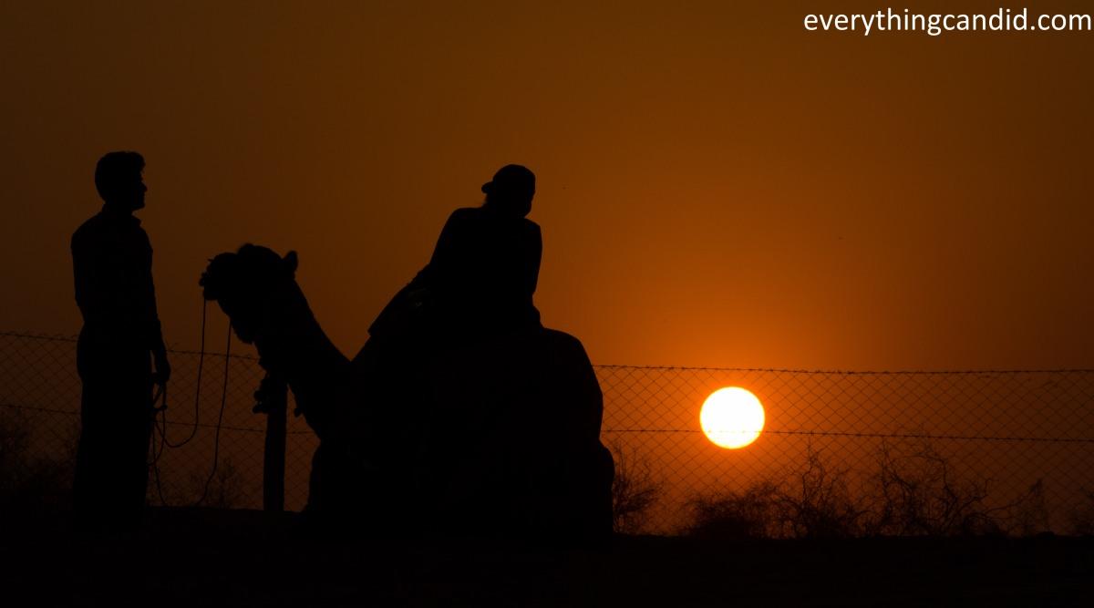 Desert Safari, Thar Desert, Rajasthan, India, Camel Ride, Travel, Camping, Desert Night, Sunrise, Sunset