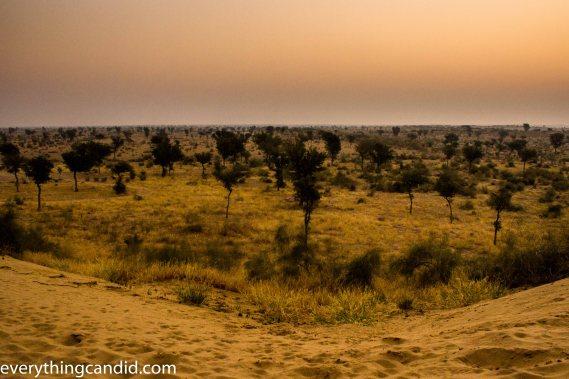 Desert Safari, Thar Desert, Rajasthan, India, Camel Ride, Travel, Camping, Desert Night