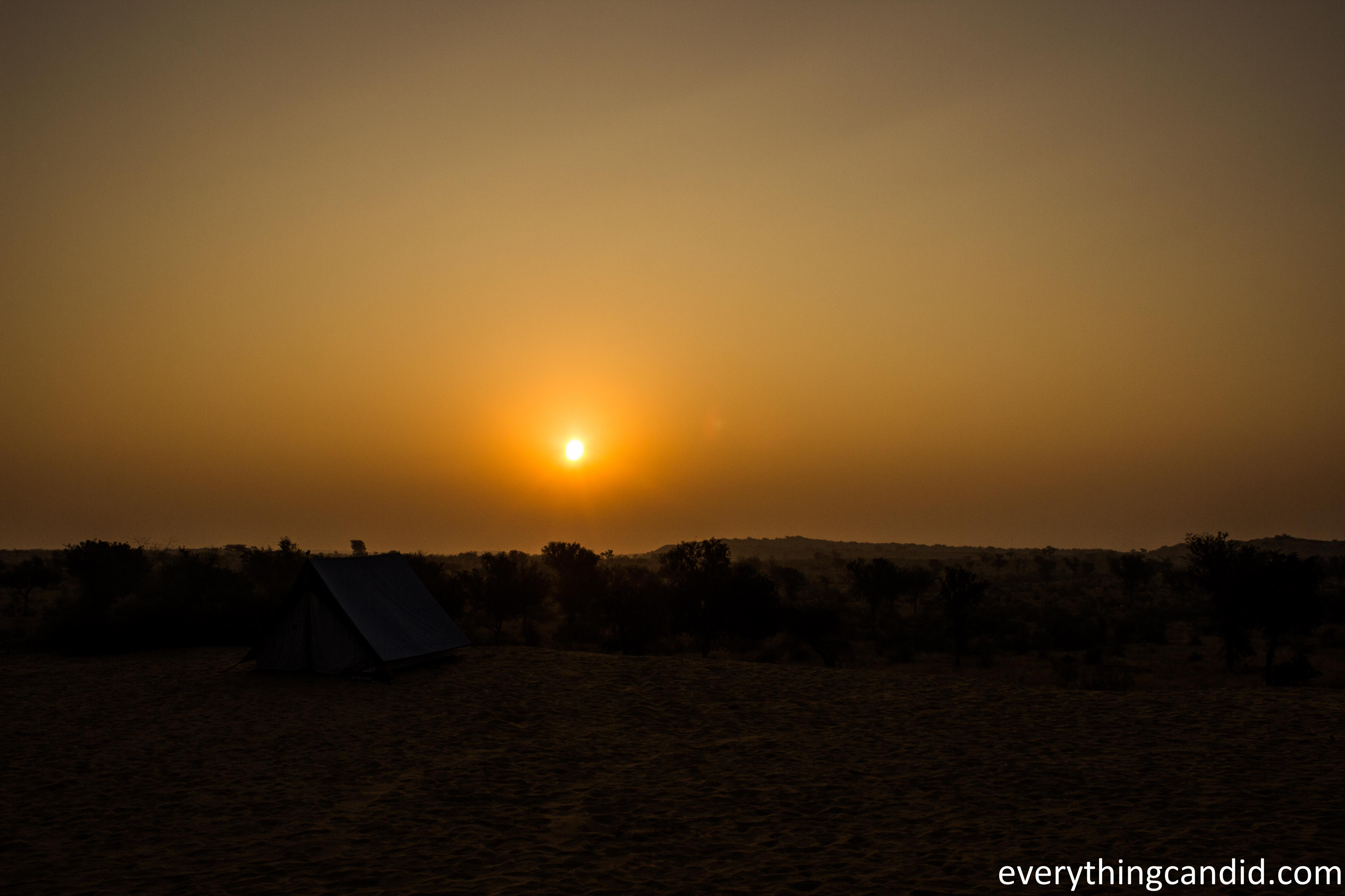 desert essay Operation desert storm essay examples 17 total results an introduction to the essay on the topic of a desert storm 934 words 2 pages an overview of the reason .