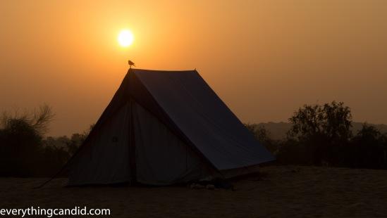 Sun, Golden Hour, Chasing the Sun, Desert