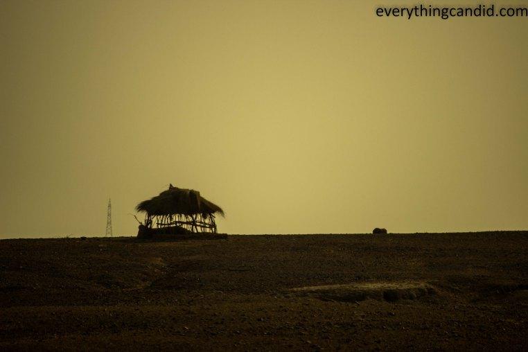 Self Drive, Road Trip, India, Rajasthan, Ford Figo, Bikaner, Mandawa, Haveli, Travel, Photography, Photo, forts, Desert, Thar, Camel, Bhujia, Jaipur, Desert Safari, Camel Ride