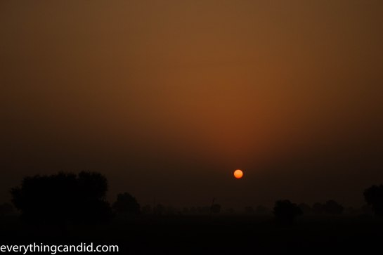 Self Drive, Road Trip, India, Rajasthan, Ford Figo, Bikaner, Mandawa, Haveli, Travel, Photography, Photo, forts, Desert, Thar, Camel, Bhujia, Jaipur