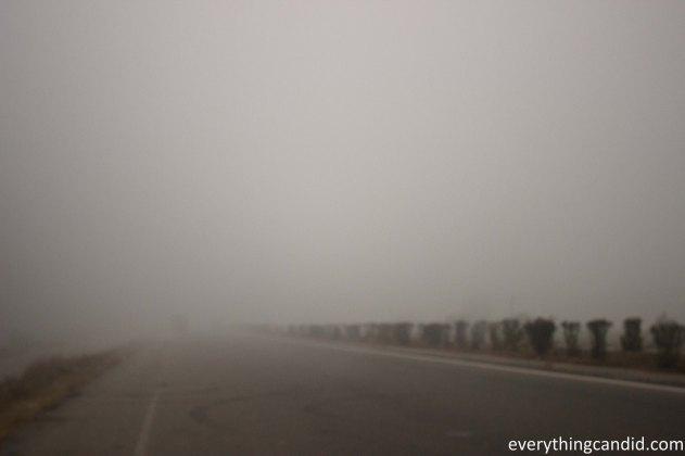 Himachal, Naggar, Kullu, Beas, India, Road Trip, Self Drive, Manali, Travel