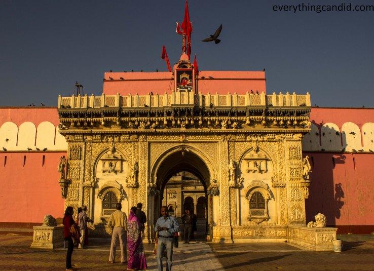 Karni mata, Bik, Rat Temple, Rajasthan, India, Bikaner