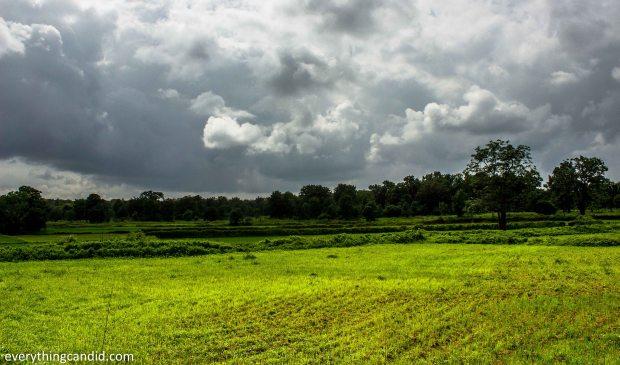 Landscape of Chhattisgarh