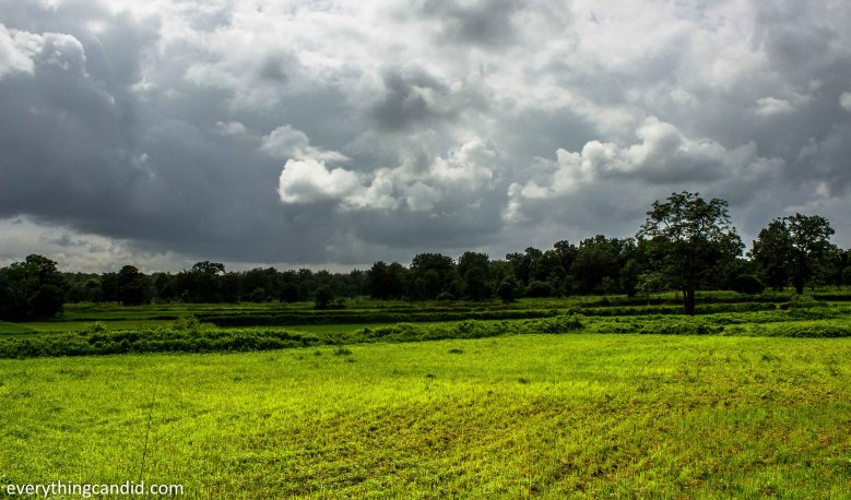 Landscape of Chhattisgarh