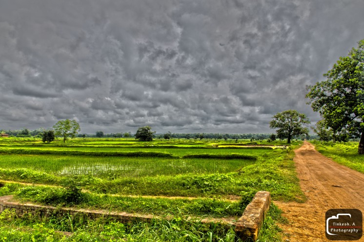 Professional Photographers Shot of Landscape. PC Tinkesh
