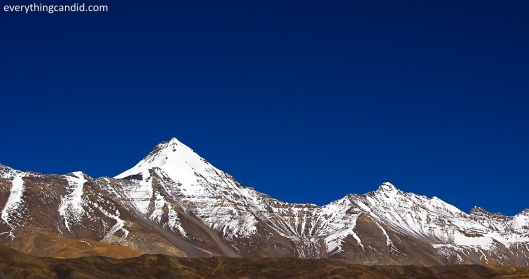 Snow capped peaks as seen from Kaumik near Kaza!