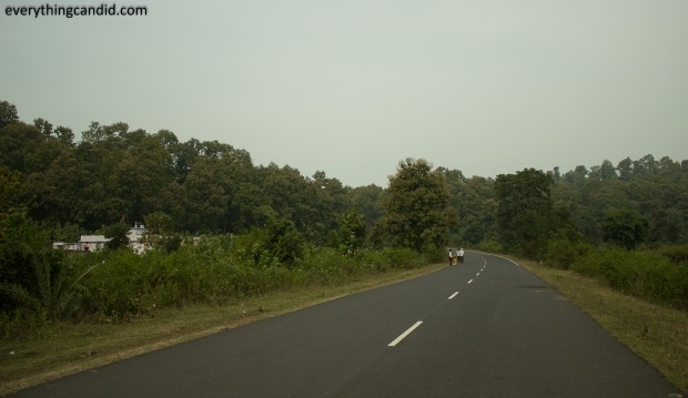 Rural Landscape of Chhattisgarh, India.