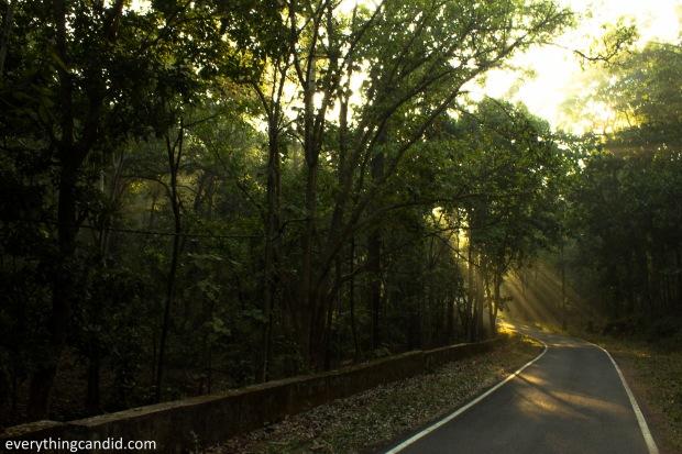 Road Trip to Madhya Pradesha nd Chhattisgarh.