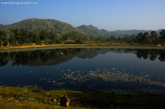 Artificial Lake next to Bhoram Deo Temple, Chhattisgarh, India.