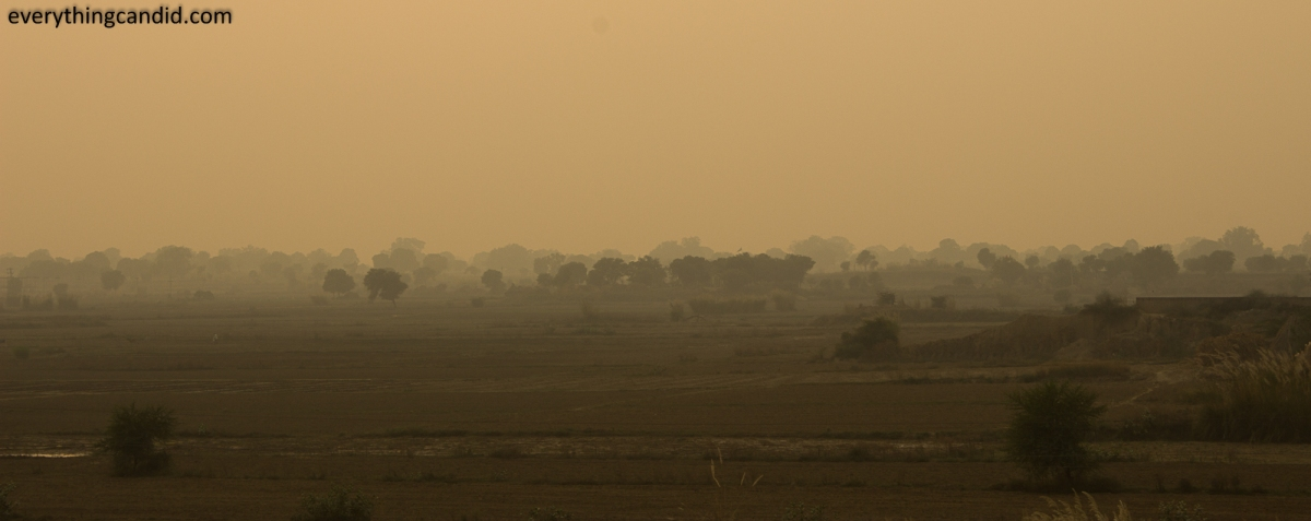 Rural Landscape from Rajasthan: Early winter misty evening!