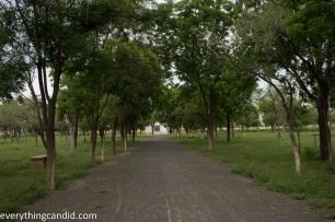 Khejrali Village - Bishnoi - Jodhpur-1-2