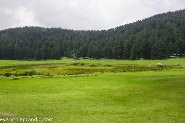 Khajjiar Meadow