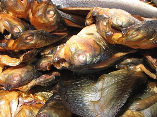 fish-214852_1280