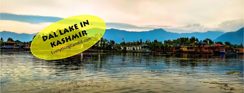 Beutiful lake of Srinagar - dal lake. Himalayan lake